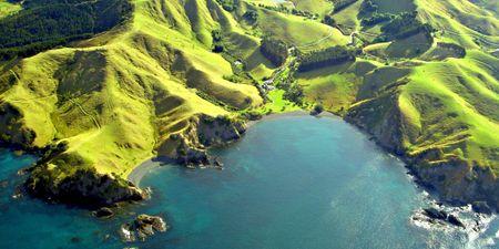 North Island New Zealand Honeymoon