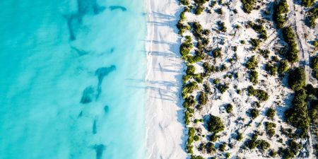 Turks and Caicos Honeymoon Itinerary